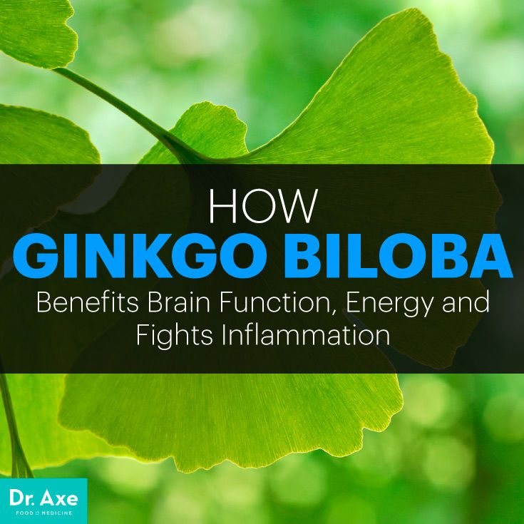 Ginkgo-biloba-extract-powder