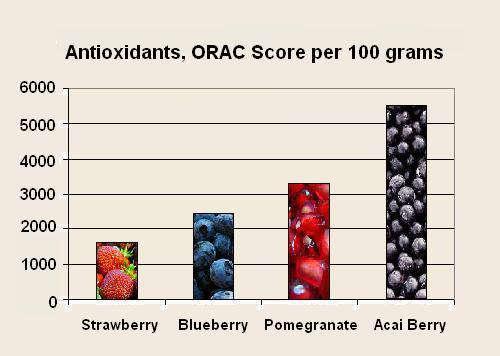 Best_antioxidant_Acai_berry_weight_loss