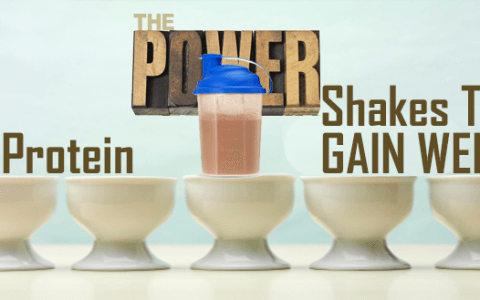 Protein_shakes_to_gain_weight