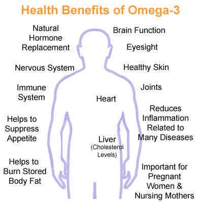 acai_contains_omega-3-benefits