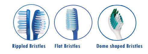 bristle type for dental tooth brush